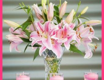 Pink Passion Lilies