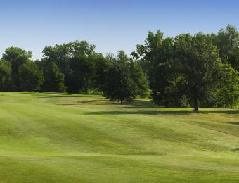 MacDonald Golf Course Hills and Trees