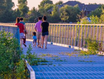 Pracht Wetlands Family2