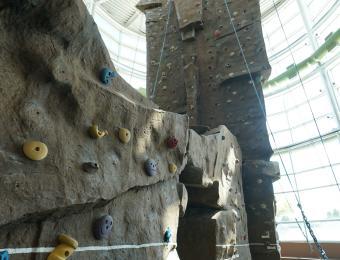 Rock Climbing Wall Northwest YMCA