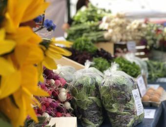OT Farmer's Market sunflowers Visit Wichita