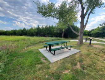 Swanson Park Picnic Table