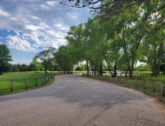 Swanson Park Parking