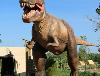 Field Station t-rex Visit Wichita
