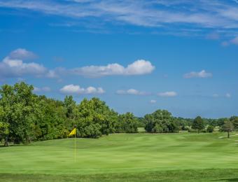 Tex Consolver Golf Course Yellow Flag
