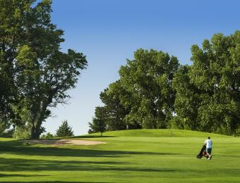 Tex Consolver Golf Course Trees