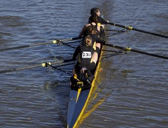 Shocker Rowing