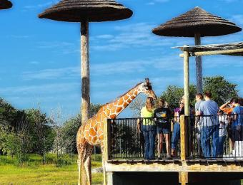 Tanganyika Wildlife Park Wichita