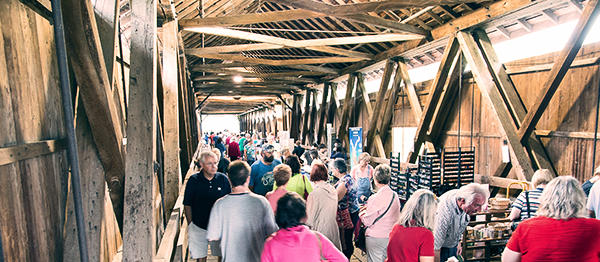 Potter's Bridge Festival