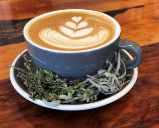Herbaceous Latte at Relevant Coffee