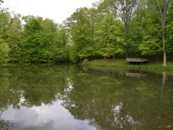 Washington Township Park pond