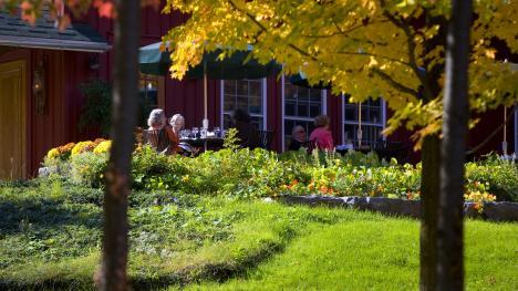 The Restaurant at Elderberry Pond