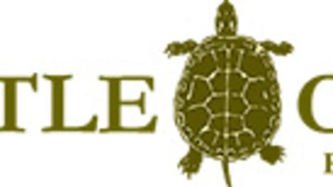 Turtle Cove Resort & Marina