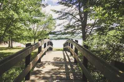 Swan Lake SP