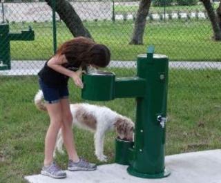 Van Alder Dog Park