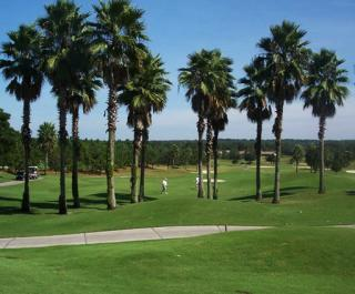 Spruce Creek Golf