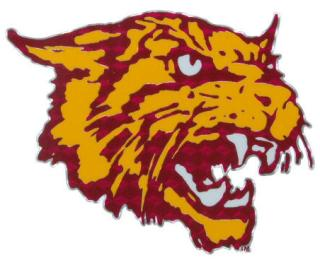 Bethune Cookman University - College Sports