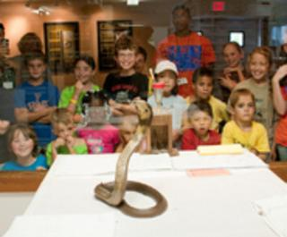 Reptile Discovery Center