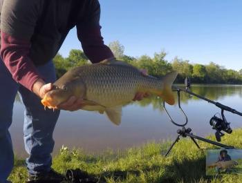 A man holding a large Carp beside a Dayton river