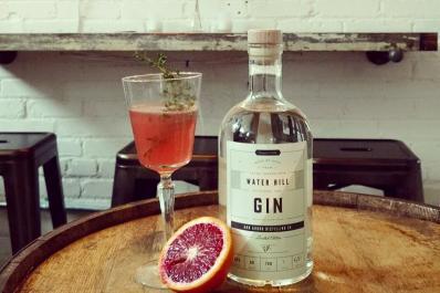 Gin_and_Grapefruit.jpg