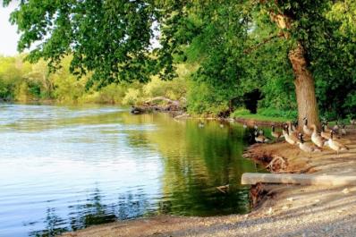 Waterworks_Park.PNG