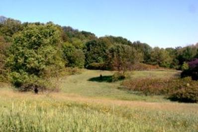 county-farm-park.jpg