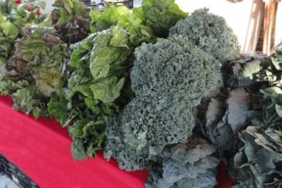 saline-farmers-market.jpg