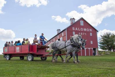 Horse and wagon in front of barn