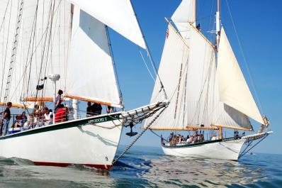 Appledore Tallships