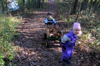 Preschool children hauling leaves on a trail