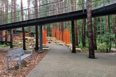 Canopy Walk Entrance 1