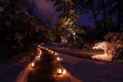 Dow Gardens in the Winter