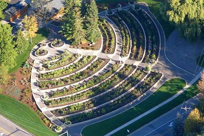 Dahlia Hill Aerial