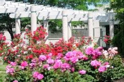 Lucille E. Andersen Memorial Rose Garden