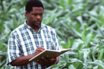 Man doing research on farm