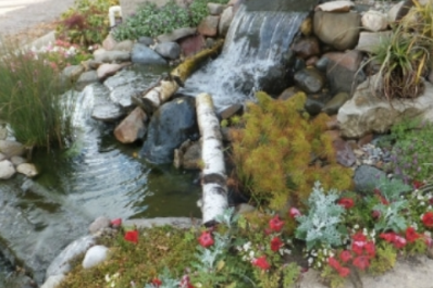Waterfall in yard