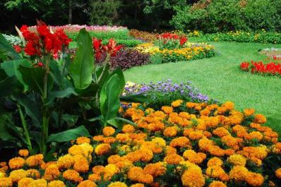 Dow Gardens in Summer