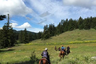 Scenic ride through alpine meadows