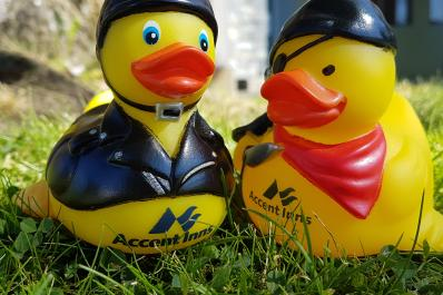 Free rubber duck in every room