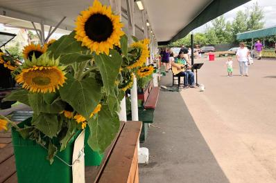 Co-Op Farmers Market
