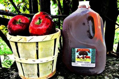Apple Cider at Millers Orchard's Farmers Market
