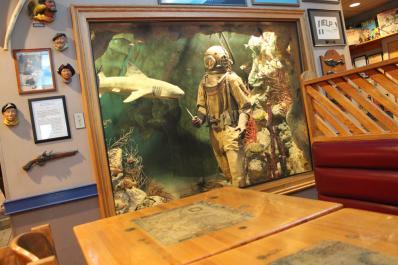 Diver display