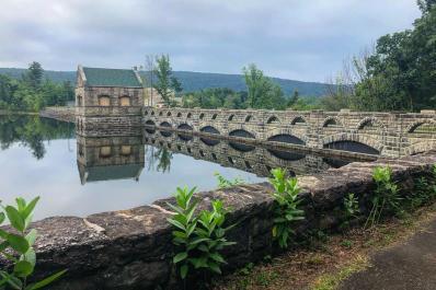 lakescranton 1