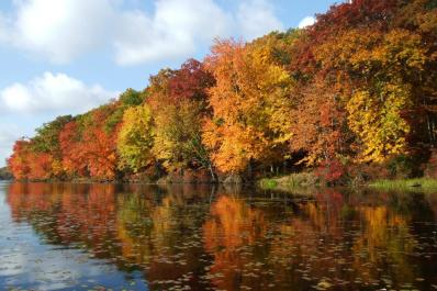 Delaware Water Gap Autumn