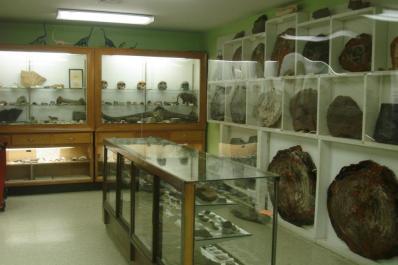Franklin Mineral Museum Inside 2