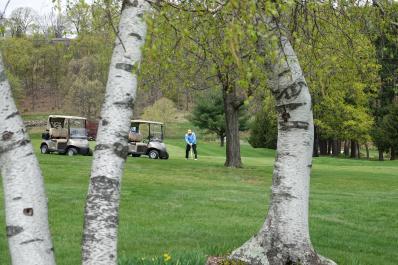 LMGC Golfer