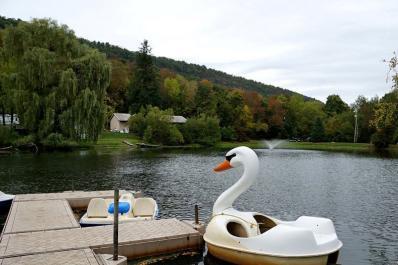 Harmony Ridge Swan Boat