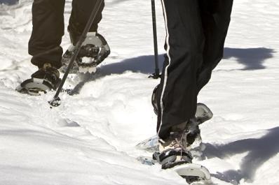High Point Cross County Skiiers