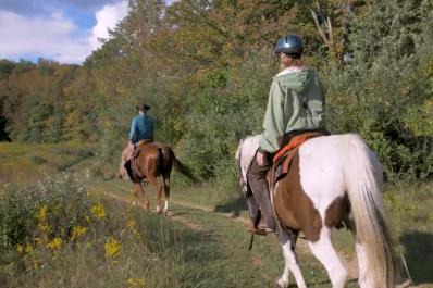 KVSP Horses
