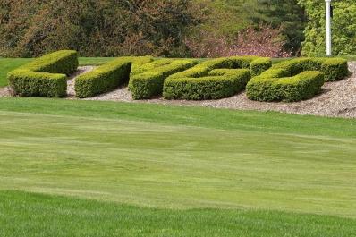 LMGC Hedges